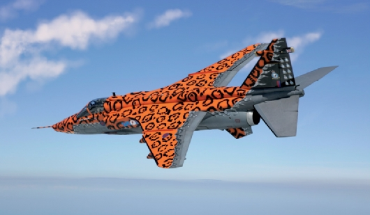 "JAGUAR Gr.3 ""BIG CAT"" Special Colors"