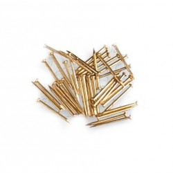BRASS PLATED NAILS 10.0mm