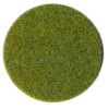 Grass Fiber Light Green