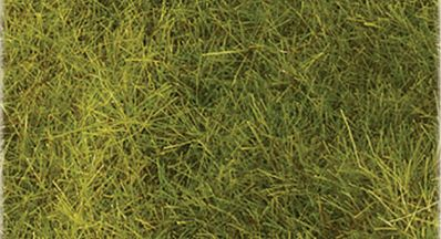 Wild Grass Matting Meadow Green